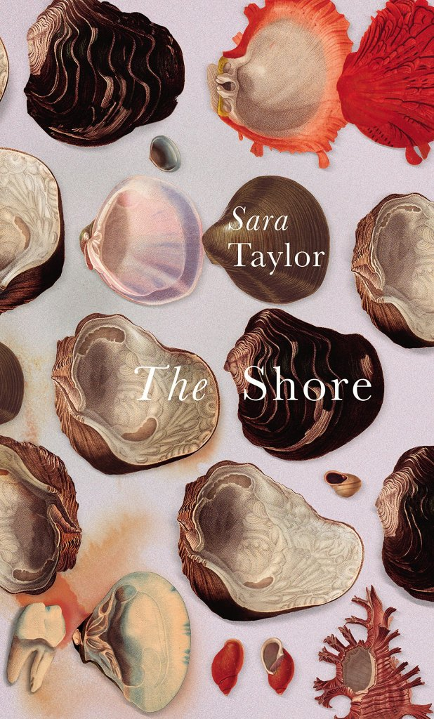 The Shore by Sarah Taylor, UK edition